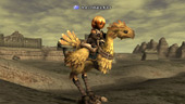 Final Fantasy XI: MS gets his chocobo license