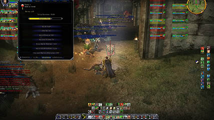 Lord of the Rings Online: A Raid in Progress